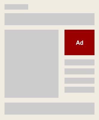 バイラルメディア:純広告